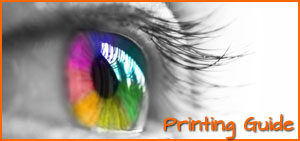 Printing guide