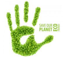 Eco Friendly Brochure Printing