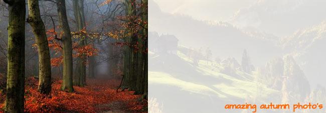 Amazing Autumn Season Photos